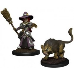 WizKids Wardlings: Girl Witch & Witch's Cat