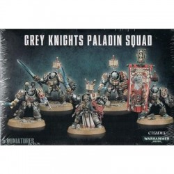 GREY KNIGHTS PALADIN SQUAD