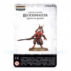 Bloodmaster Herald of Khorne