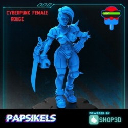 Cyberpunk Female Rogue