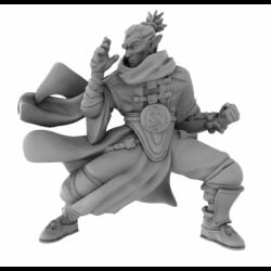 Elf Monk Unarmed