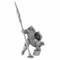 Half Orc Male Paladin With...