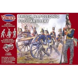 British Napoleonic Foot...