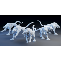 Hound Rats (5)