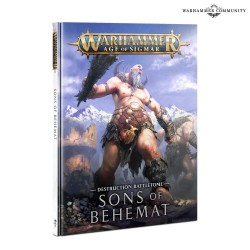 copy of Battletome Sons of...