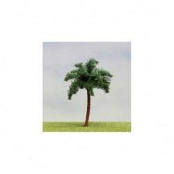 1 Palmier 14cm