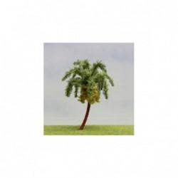 1 Palmier Fleuri 14cm