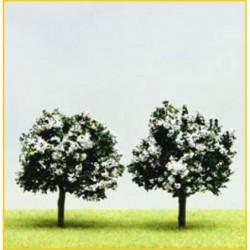 2 Arbres Fruitiers Fleuris...
